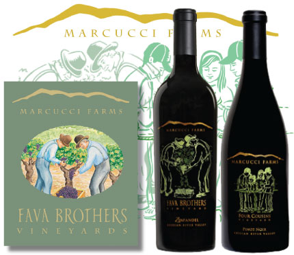 Branding for Fava Brothers Vineyards at Marcucci Farms by Christine Walker